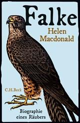 Cover des Buches 'Falke'