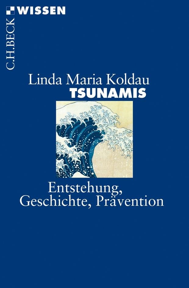 Cover des Buches 'Tsunamis'
