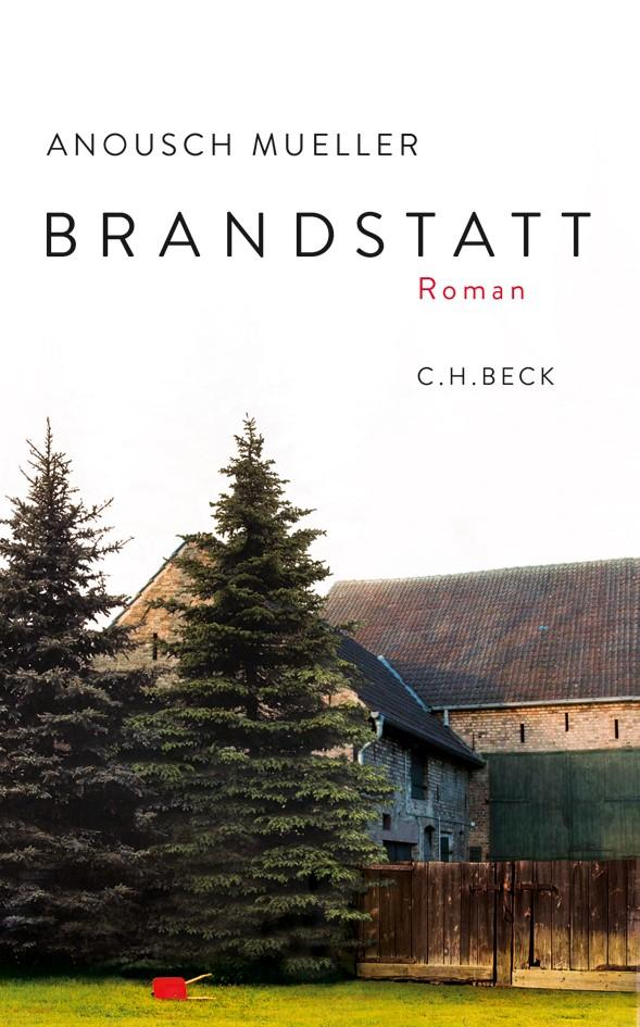 Cover des Buches 'Brandstatt'