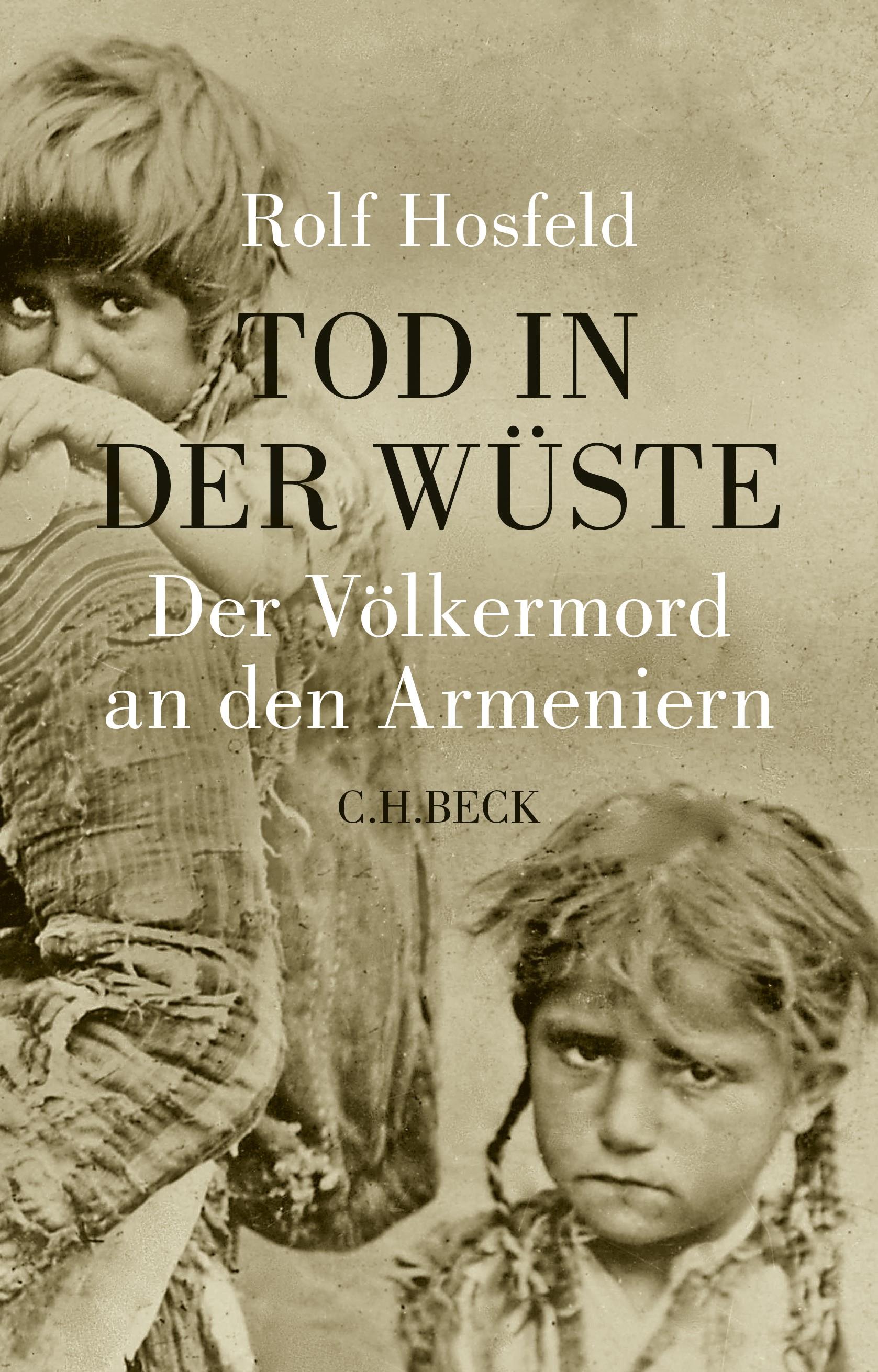 Cover des Buches 'Tod in der Wüste'