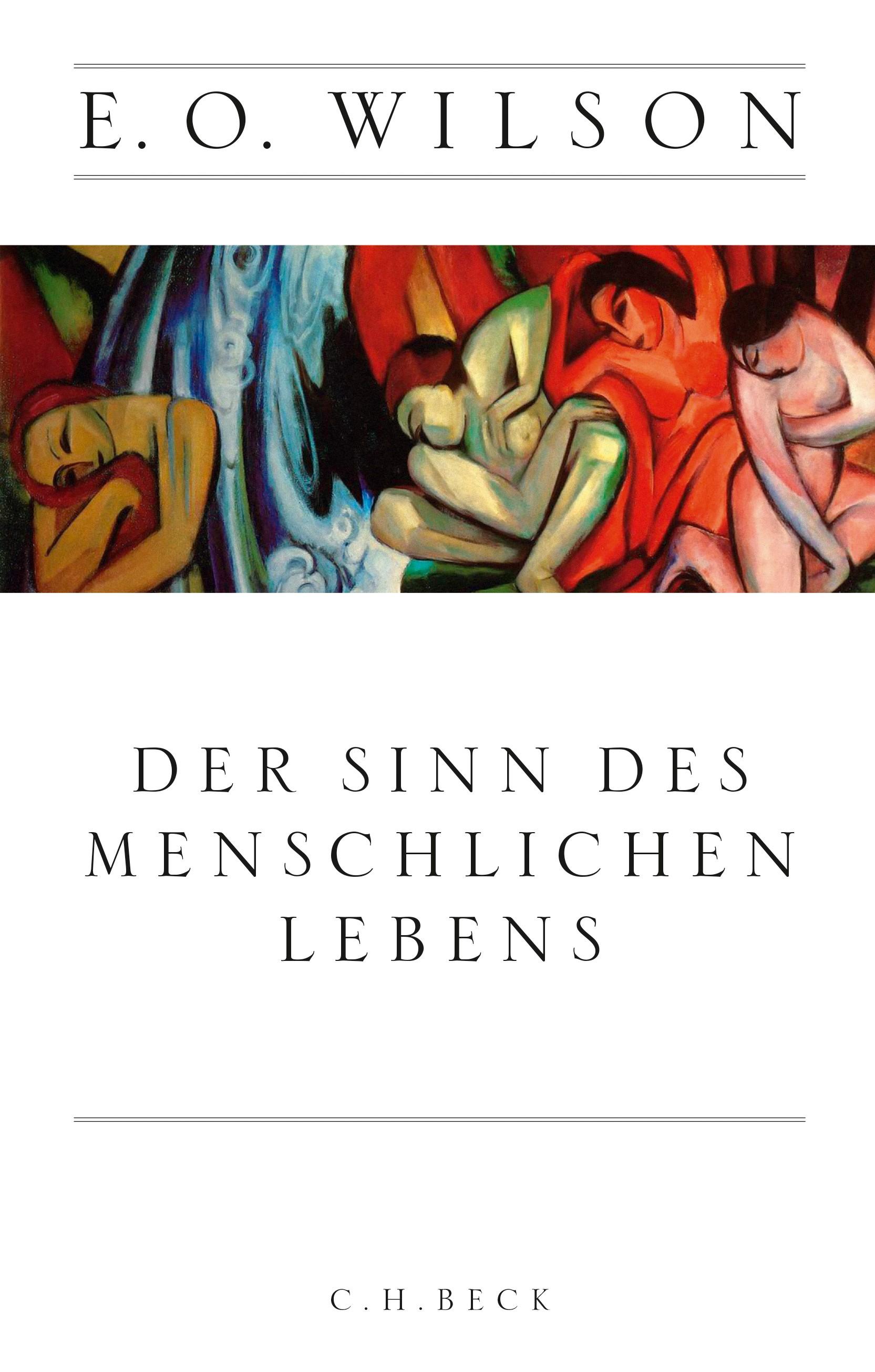Cover des Buches 'Der Sinn des menschlichen Lebens'