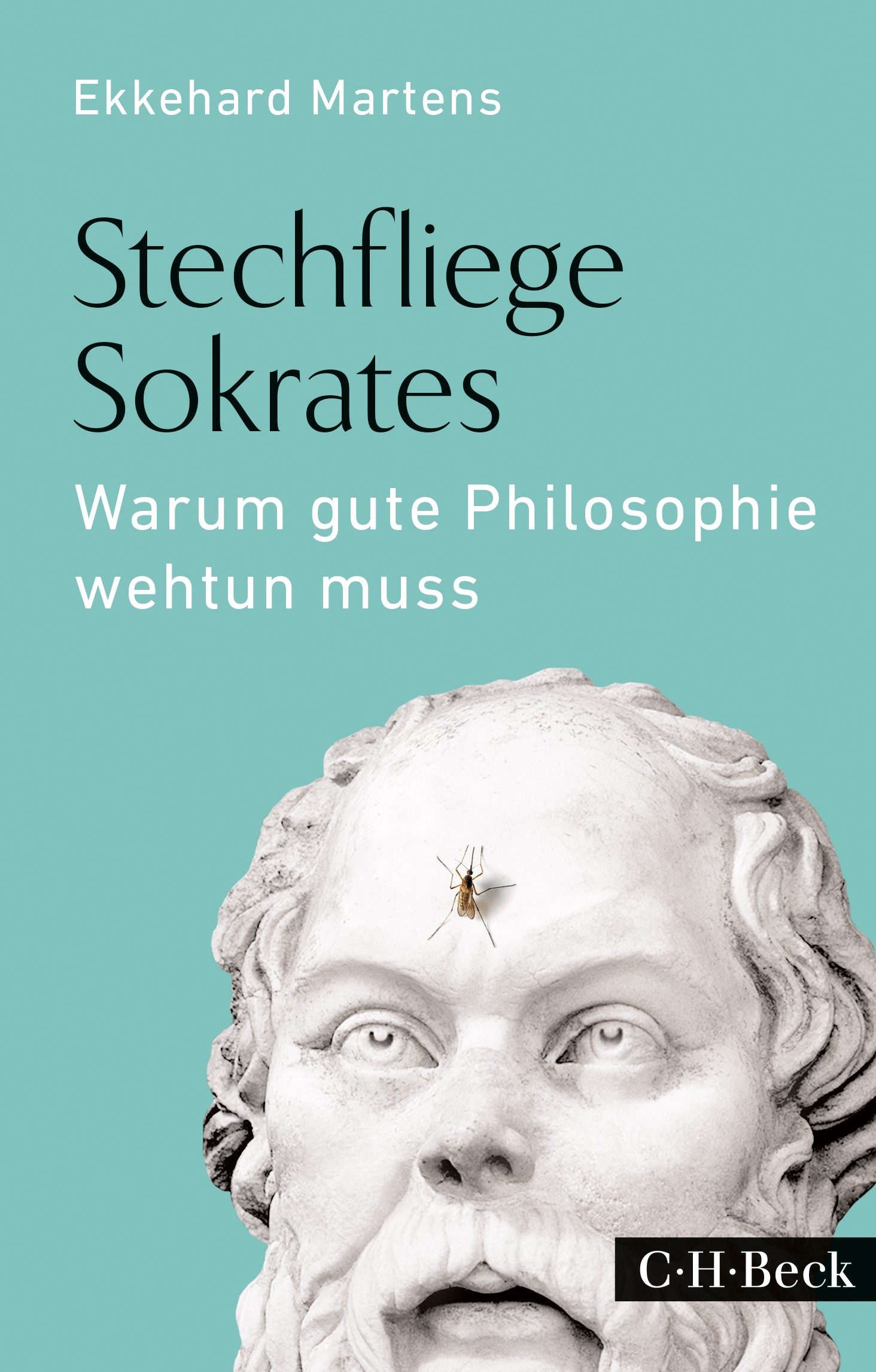 Cover des Buches 'Stechfliege Sokrates'