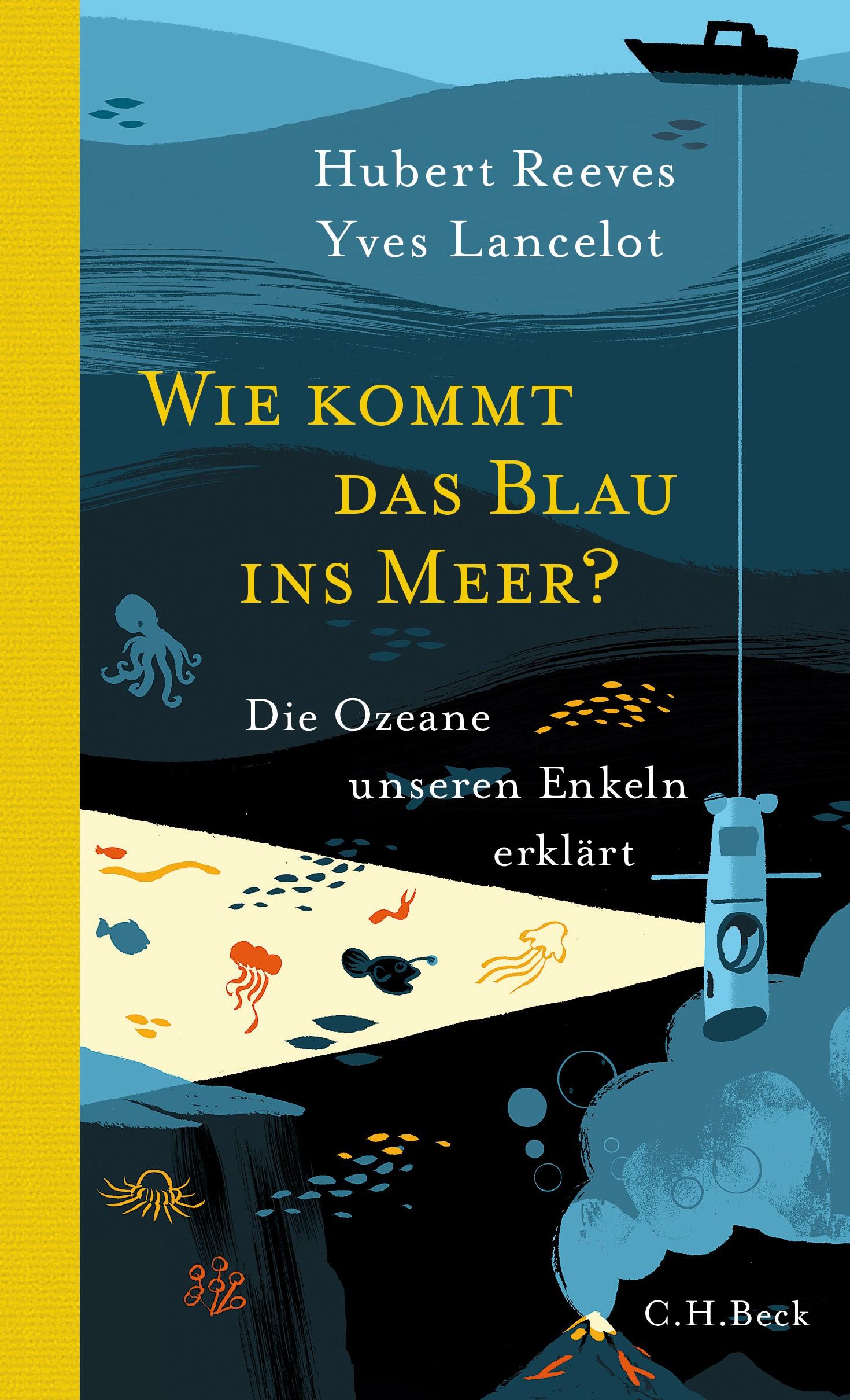 Cover des Buches 'Wie kommt das Blau ins Meer?'