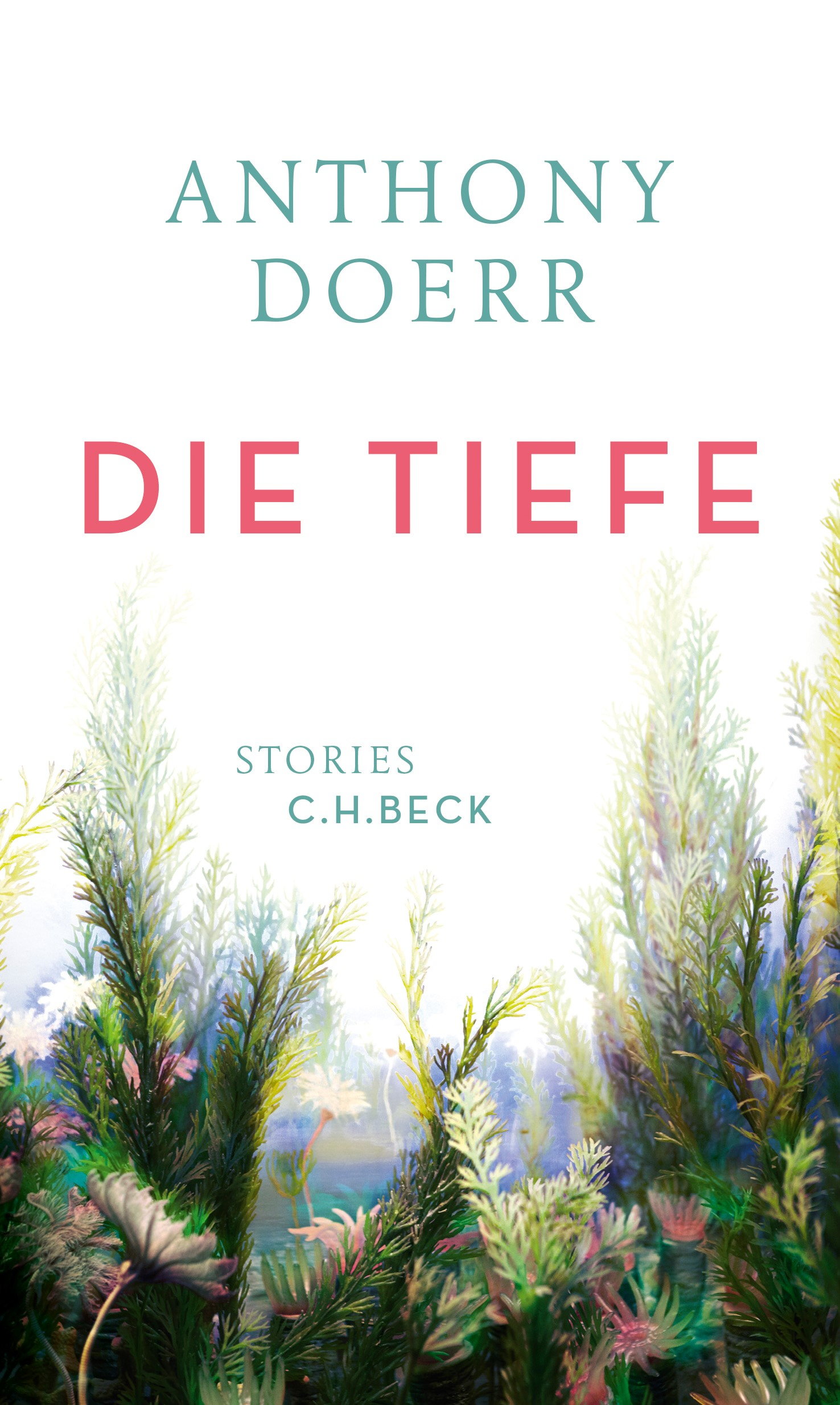 Cover des Buches 'Die Tiefe'