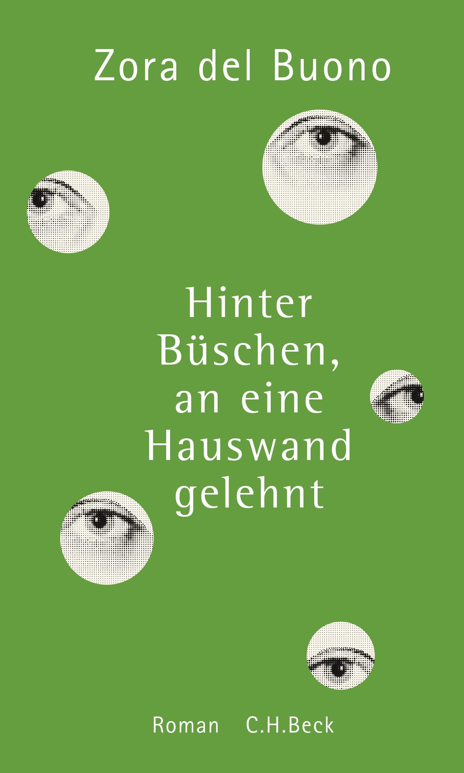 Cover des Buches 'Hinter Büschen, an eine Hauswand gelehnt'