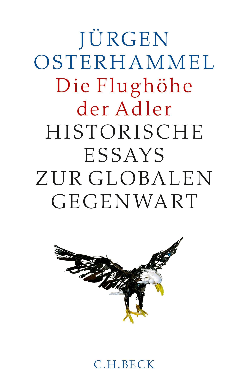 Cover des Buches 'Die Flughöhe der Adler'