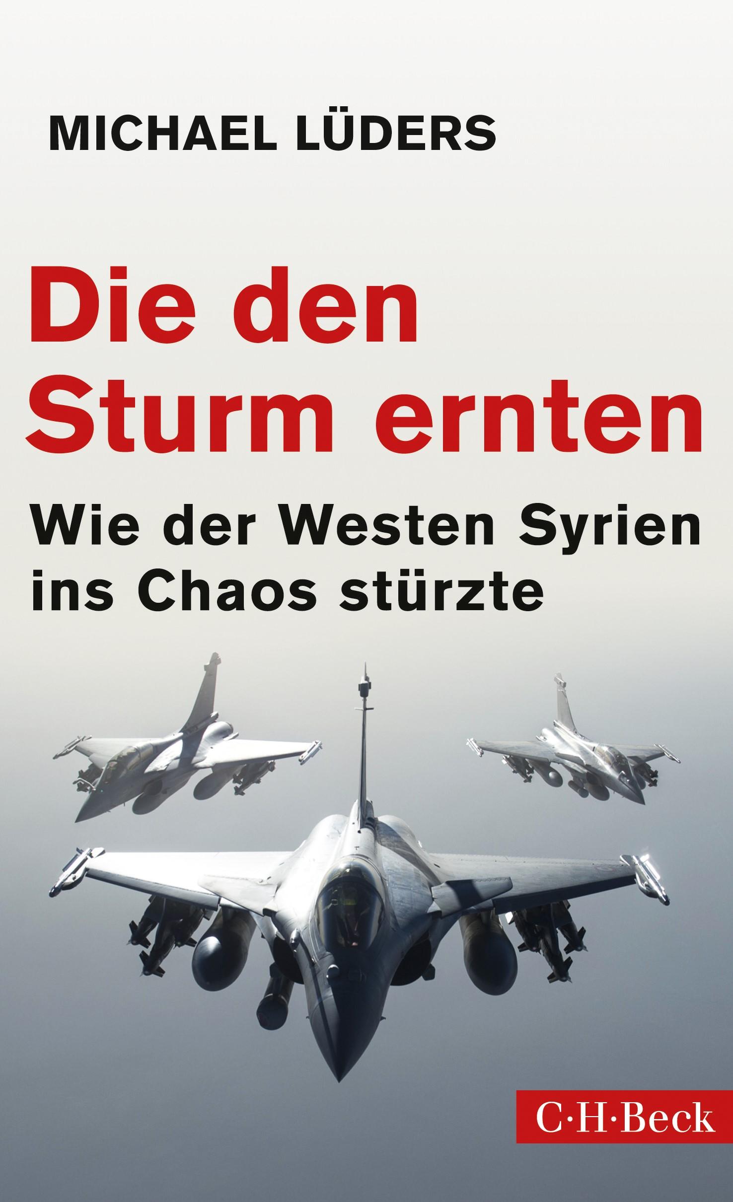 Cover des Buches 'Die den Sturm ernten'
