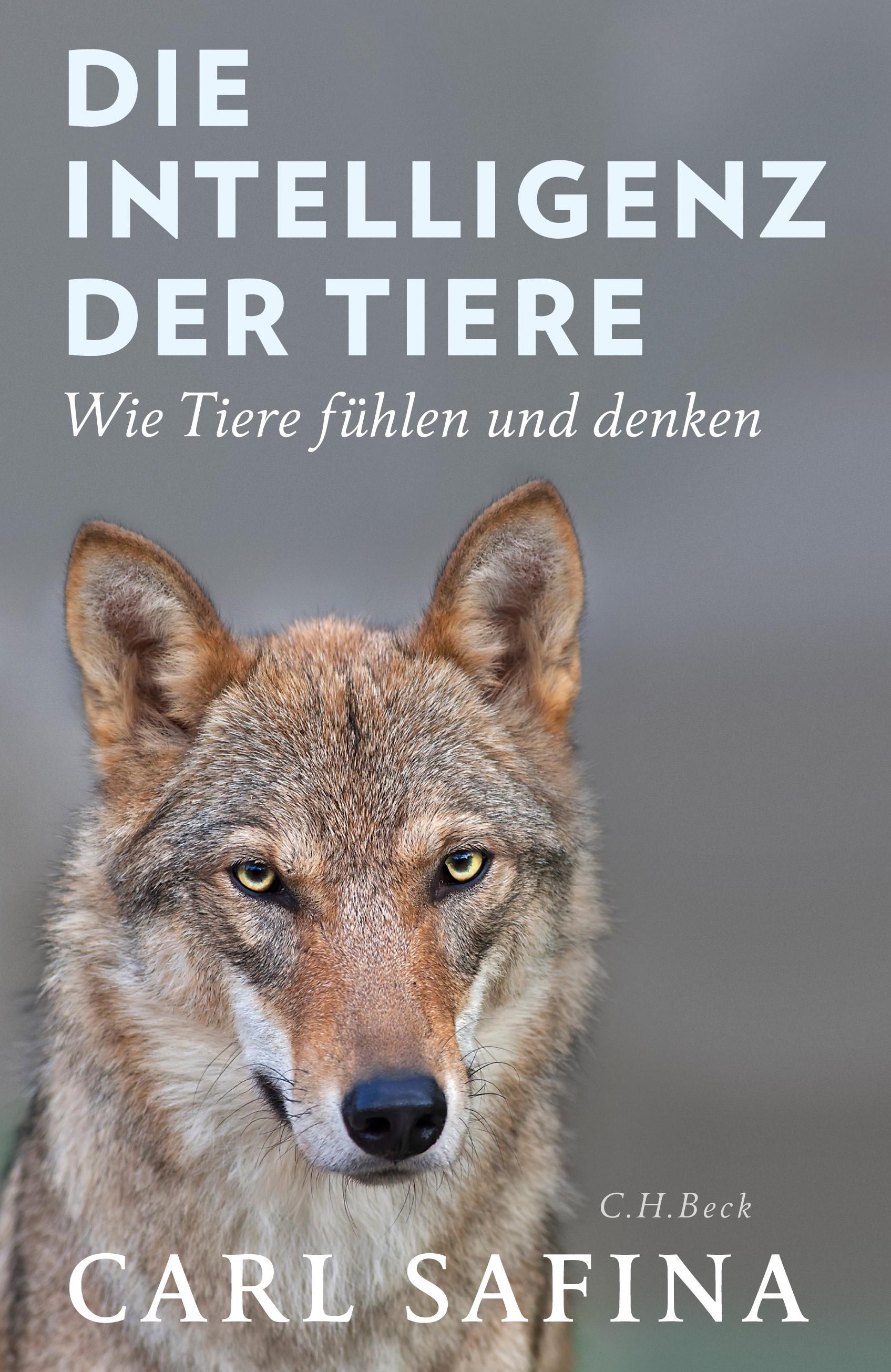 Cover des Buches 'Die Intelligenz der Tiere'