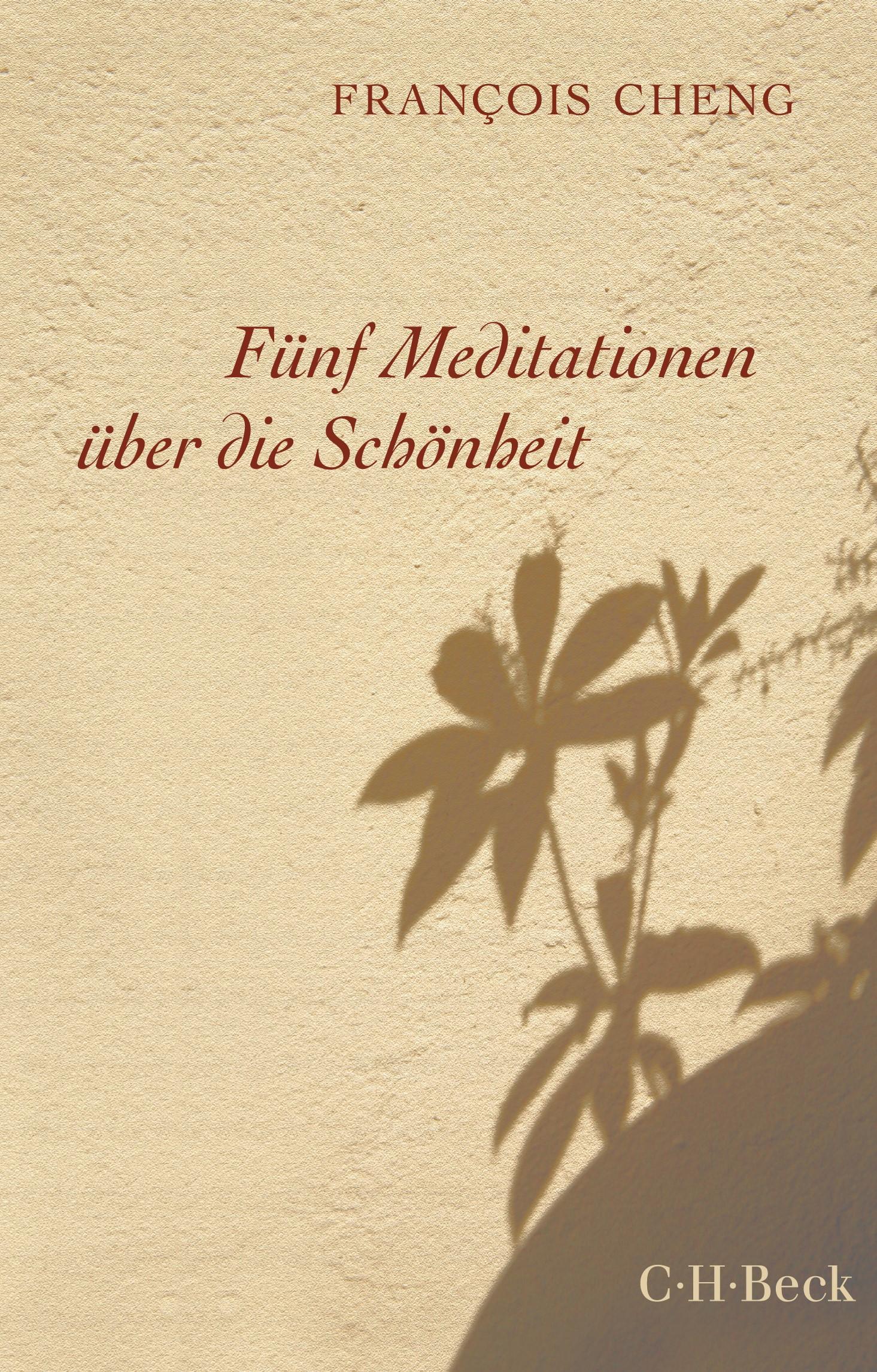 Cover des Buches 'Fünf Meditationen über die Schönheit'