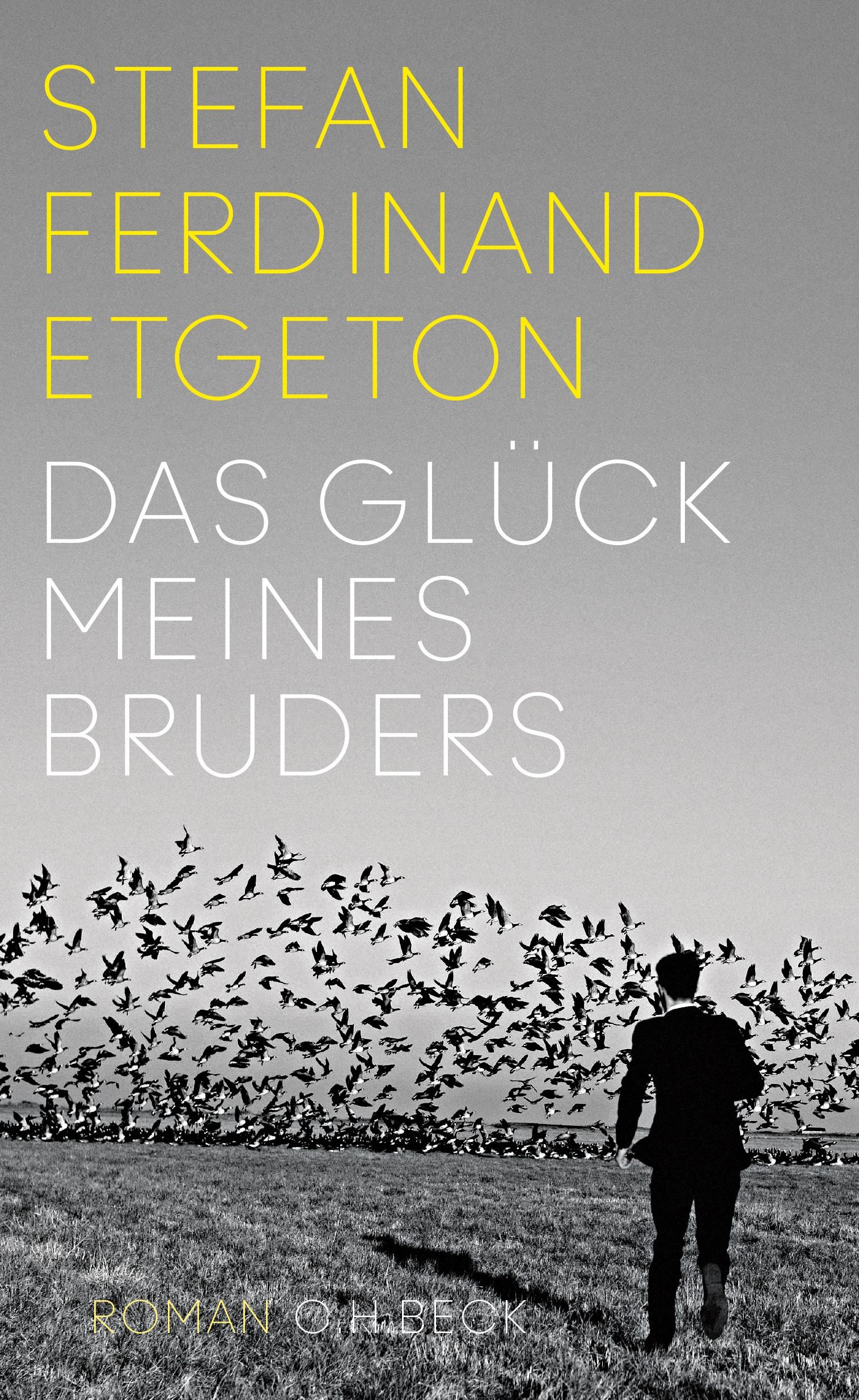 Cover des Buches 'Das Glück meines Bruders'