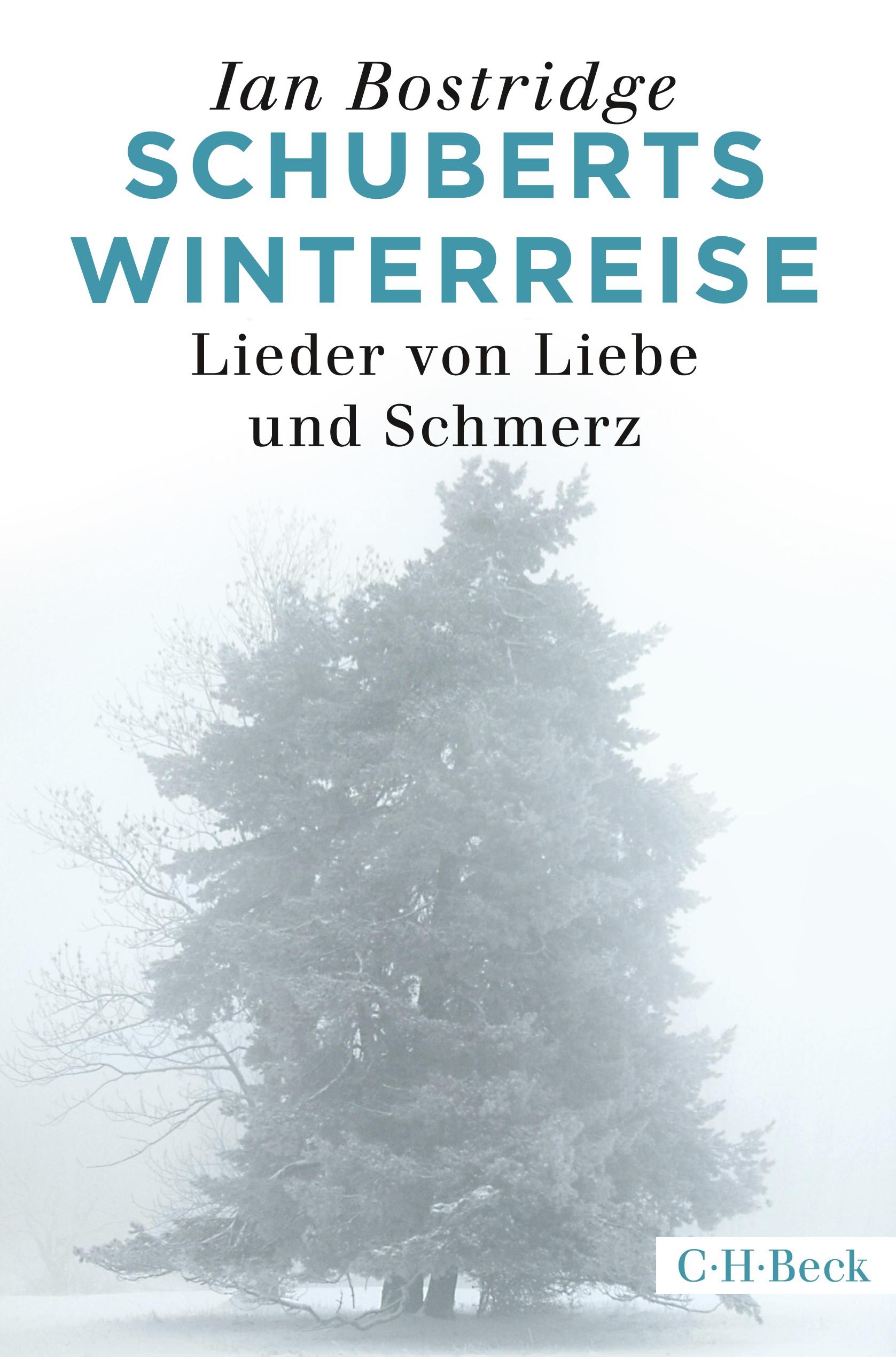 Cover des Buches 'Schuberts Winterreise'