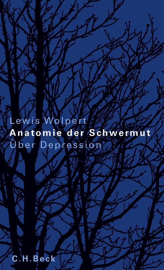 Cover des Buches 'Anatomie der Schwermut'