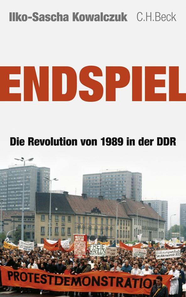 Cover des Buches 'Endspiel'