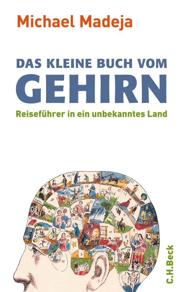 Cover des Buches 'Das kleine Buch vom Gehirn'