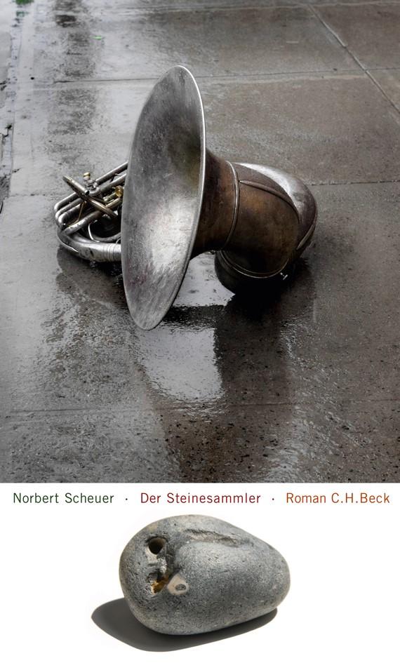 Cover des Buches 'Der Steinesammler'