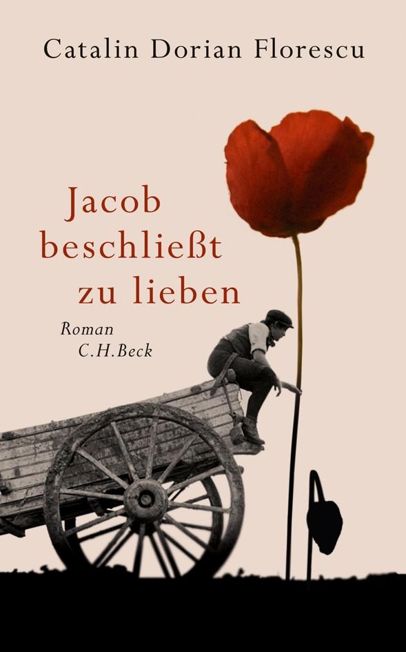 Cover des Buches 'Jacob beschließt zu lieben'