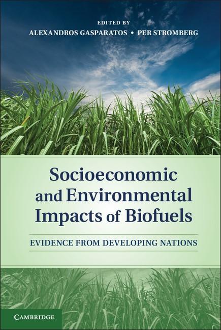 Abbildung von Gasparatos / Stromberg   Socioeconomic and Environmental Impacts of Biofuels   2012