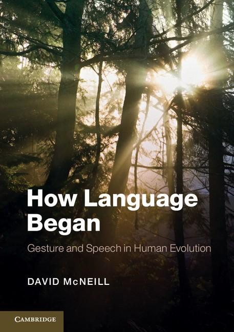 Abbildung von McNeill   How Language Began   2012