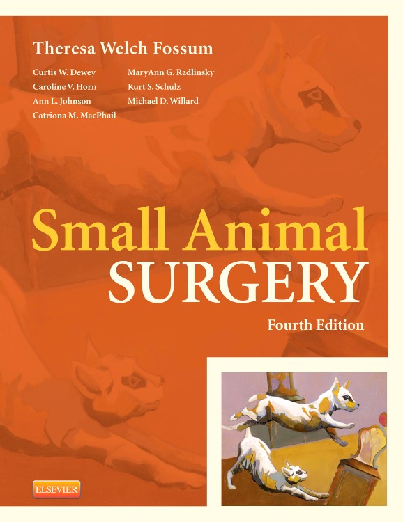 Abbildung von Welch Fossum   Small Animal Surgery Expert Consult - Online and print   2012