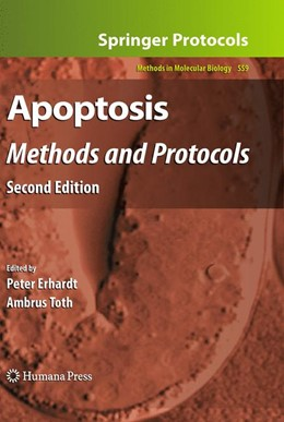 Abbildung von Erhard / Toth | Apoptosis | 2011 | Methods and Protocols, Second ... | 559