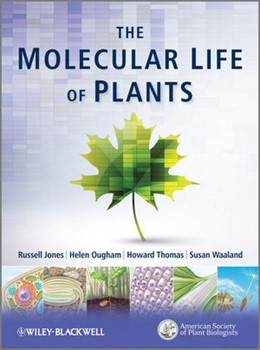 Abbildung von Jones / Thomas / Ougham | The Molecular Life of Plants | 2012