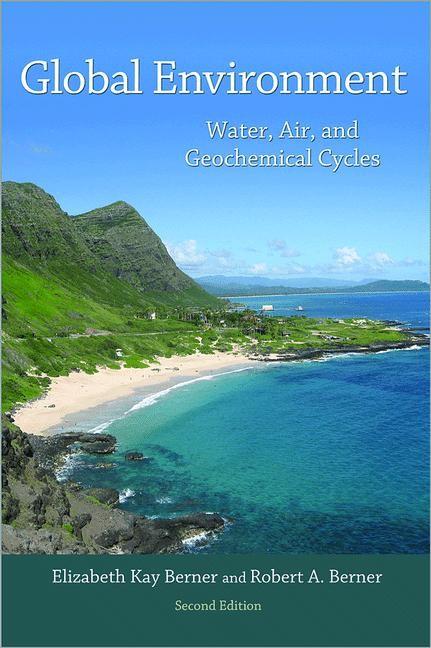 Abbildung von Berner | Global Environment | 2012