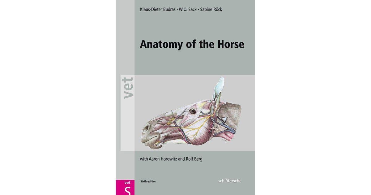 Anatomy Of The Horse Budras Sack Rck Sixth Edition 2012