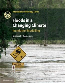 Abbildung von Di Baldassarre   Floods in a Changing Climate: Inundation Modelling   2012