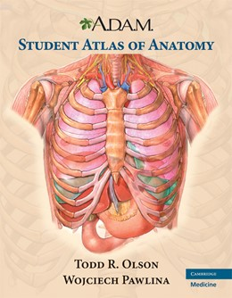 Abbildung von Olson / Pawlina | A.D.A.M. Student Atlas of Anatomy | 2nd edition | 2008