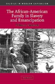 Abbildung von Dunaway | The African-American Family in Slavery and Emancipation | 2003