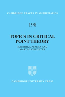 Abbildung von Perera / Schechter | Topics in Critical Point Theory | 2012 | 198