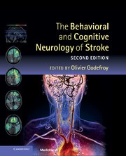 Abbildung von Godefroy | The Behavioral and Cognitive Neurology of Stroke | 2013