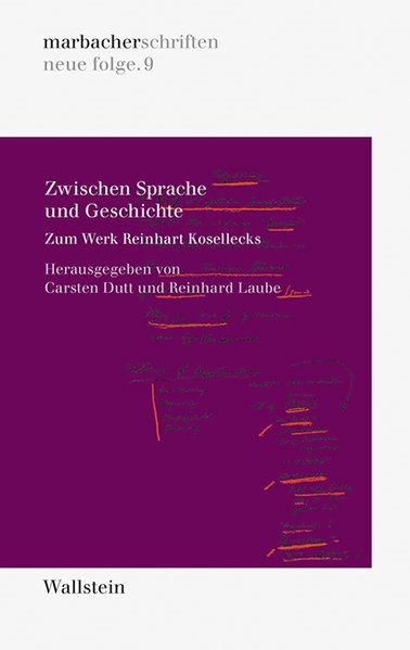 Zwischen Sprache und Geschichte   Dutt / Laube, 2013   Buch (Cover)