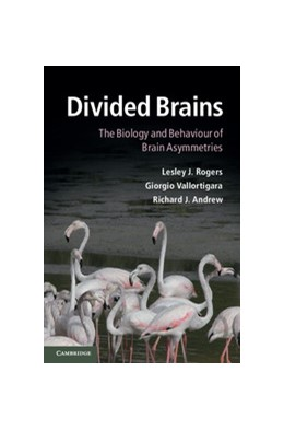 Abbildung von Rogers / Vallortigara / Andrew | Divided Brains | 2013 | The Biology and Behaviour of B...
