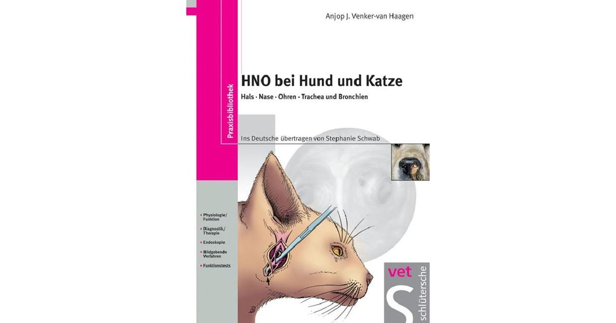 Ziemlich Nase Oberflächenanatomie Galerie - Anatomie Ideen - finotti ...