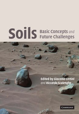 Abbildung von Certini / Scalenghe | Soils: Basic Concepts and Future Challenges | 2012