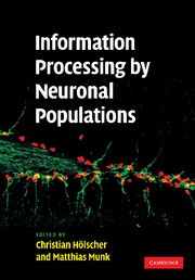 Abbildung von Holscher / Munk | Information Processing by Neuronal Populations | 2012