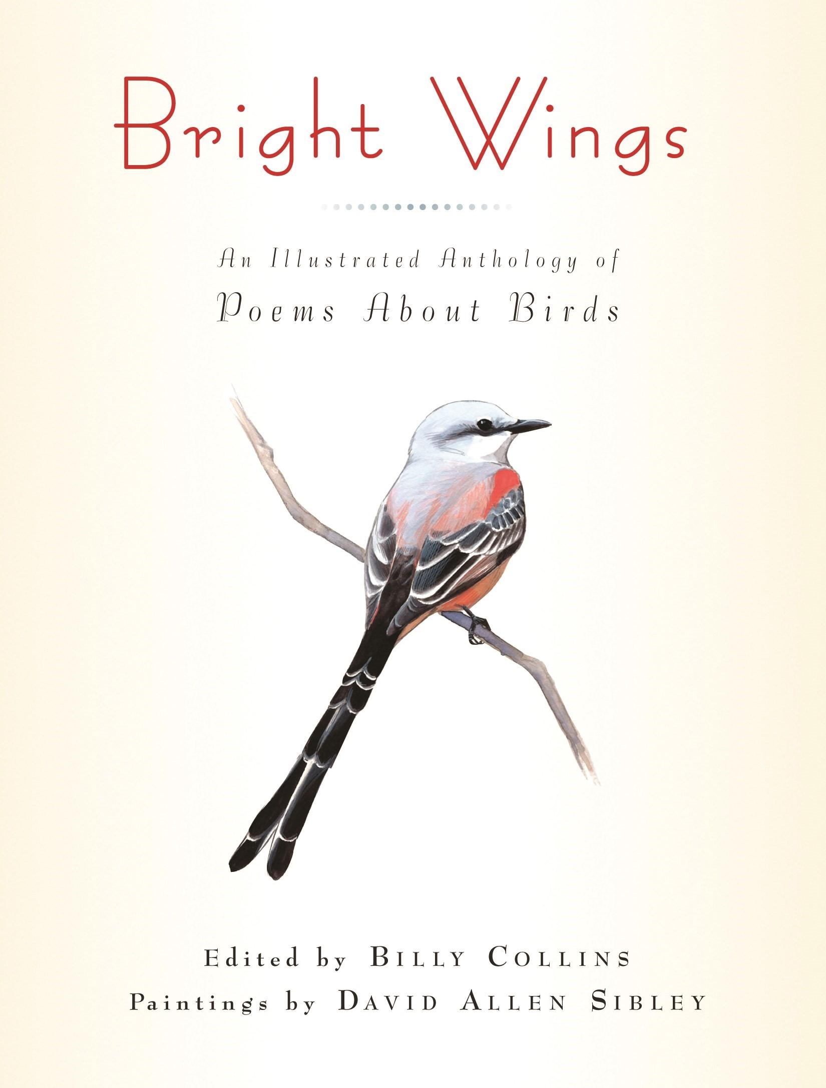 Abbildung von Collins | Bright Wings | 2012