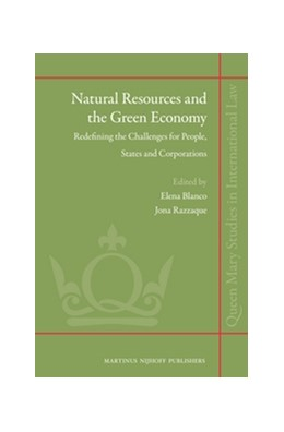 Abbildung von Natural Resources and the Green Economy | 2012 | Redefining the Challenges for ... | 10