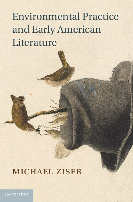 Abbildung von Ziser | Environmental Practice and Early American Literature | 2013