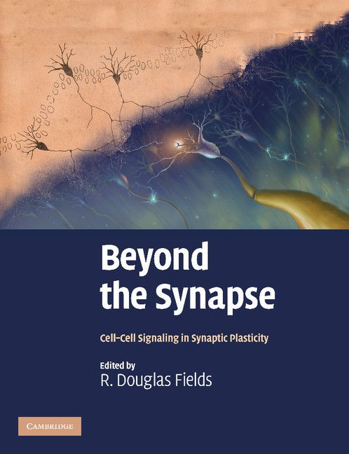 Abbildung von Fields | Beyond the Synapse | 2012