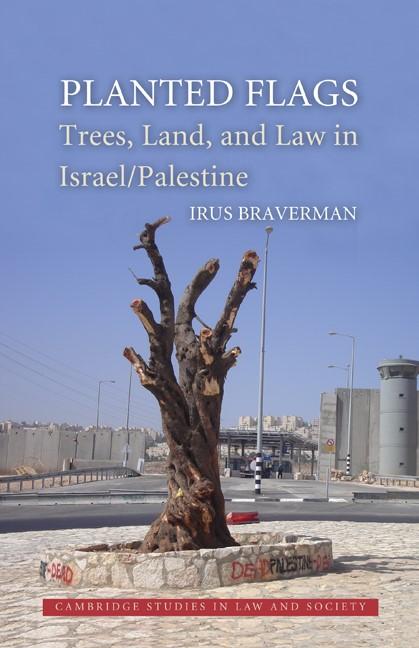 Abbildung von Braverman | Planted Flags | 2009