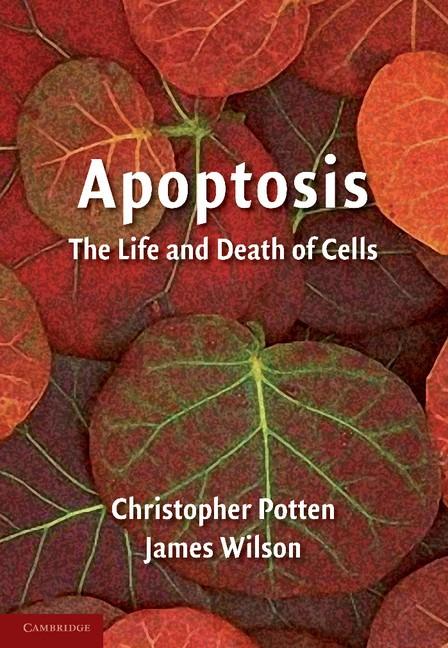Abbildung von Potten / Wilson | Apoptosis | 2004