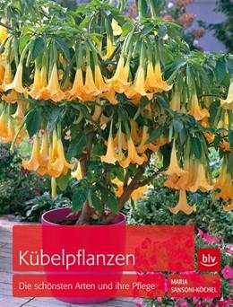 Abbildung von Sansoni-Köchel | Kübelpflanzen | 2013 | Die schönsten Arten und ihre P...