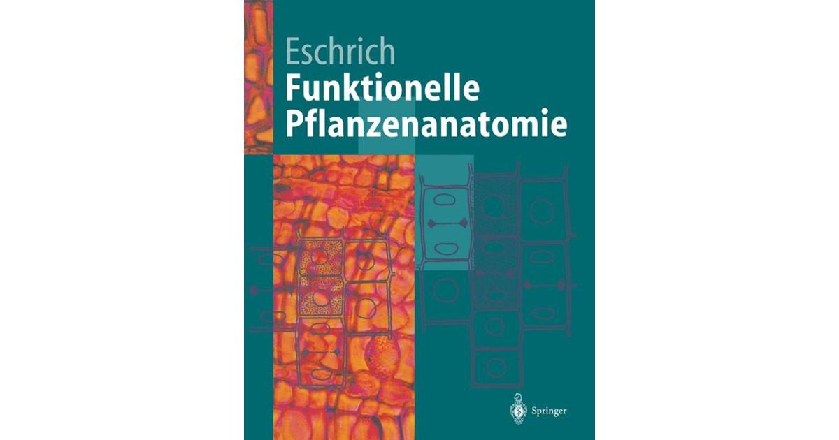 Funktionelle Pflanzenanatomie | Eschrich, 2011 | Buch | beck-shop.de