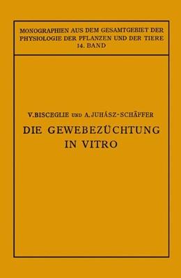 Abbildung von Gildmeister / Goldschmidt / Neuberg / Parnas / Ruhland | Die Gewebezüchtung in Vitro | 1928 | 14