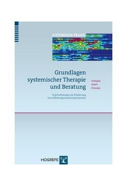 Abbildung von Schiepek / Eckert / Kravanja | Grundlagen systemischer Therapie und Beratung | 2013 | Psychotherapie als Förderung v... | 1