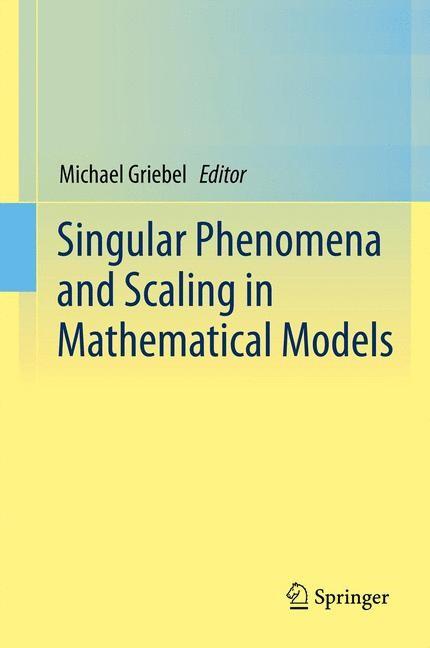 Abbildung von Griebel | Singular Phenomena and Scaling in Mathematical Models | 2013