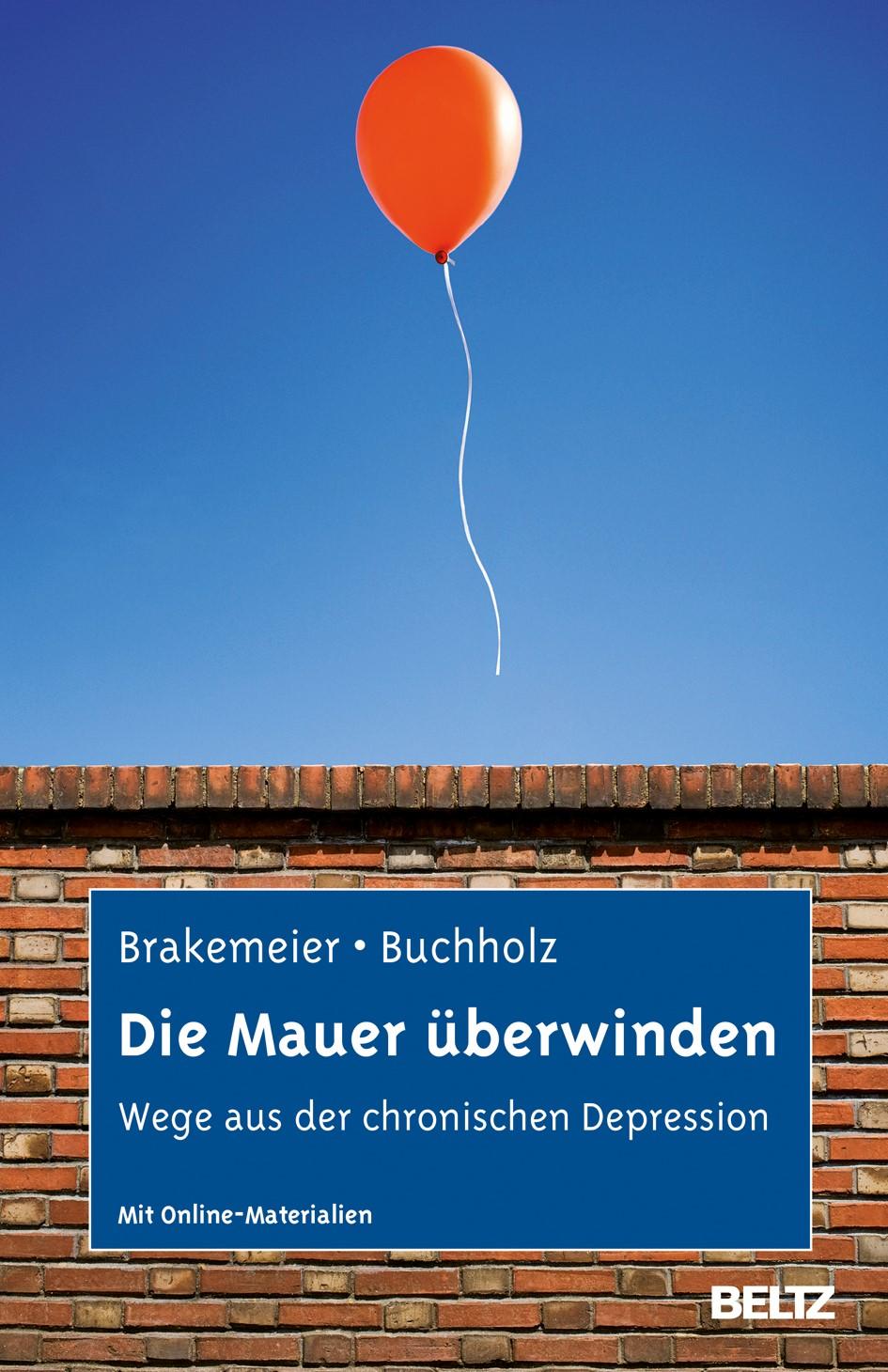 Die Mauer überwinden | Brakemeier / Buchholz | Deutsche Erstausgabe, 2013 | Buch (Cover)