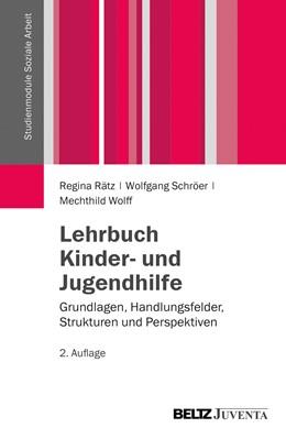 Abbildung von Rätz / Schröer | Lehrbuch Kinder- und Jugendhilfe | 2. Auflage | 2014 | beck-shop.de